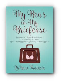 My Bra's in My Briefcase by LuAnne Fantasia