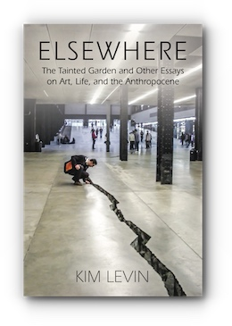 ELSEWHERE: THE TAINTED GARDEN AND OTHER ESSAYS ON ART, LIFE, AND THE ANTHROPOCENE by Kim Levin