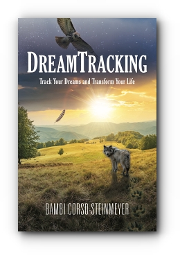 DreamTracking: Track Your Dreams and Transform Your Life by Bambi Corso-Steinmeyer