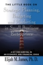 The Little Book on Strategic Planning, Budgeting and Marketing in Small Business Enterprises: A Kit for Survival in an Economic and Financial Crisis by ELIJAH JAMES