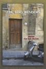 The Bird Menders by Marian Van Eyk McCain