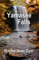 Yamasee Falls by Norma Jean Dyer