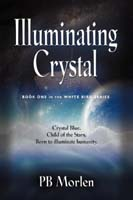 Illuminating Crystal - Book One in the White Bird Series by PB Morlen