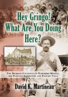 Hey Gringo! What Are You Doing Here? by David K. Martineau
