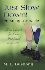 Just Slow Down!  Pursuing a Miracle by M. L. Bushong