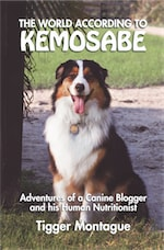 The World According to Kemosabe: Adventures of a Canine Blogger and His Human Nutritionist cover