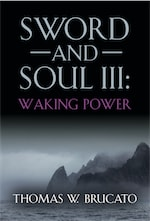 SWORD AND SOUL III: WAKING POWER cover