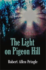 The Light on Pigeon Hill cover