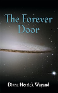 The Forever Door cover