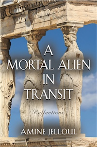 A Mortal Alien In Transit: Reflections cover